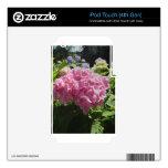 Hydrangea rosado calcomanía para iPod touch 4G