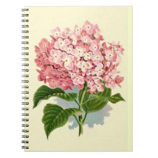 Hydrangea rosado del vintage libreta