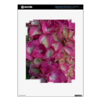Hydrangea rosado iPad 3 skins