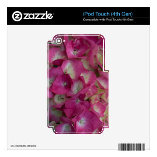 Hydrangea rosado iPod touch 4G skins