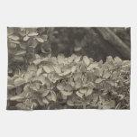 Hydrangea secado en un tono de la sepia toalla de cocina