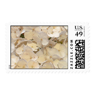 hydrangea sello