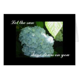 Hydrangea soleado - tarjeta en blanco