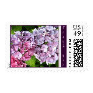 Hydrangea Thank You Stamp