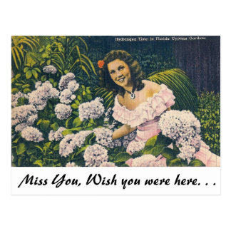 Hydrangea time in Florida Postcard
