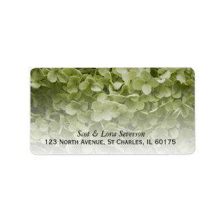 Hydrangea verde de Annabelle Etiquetas De Dirección