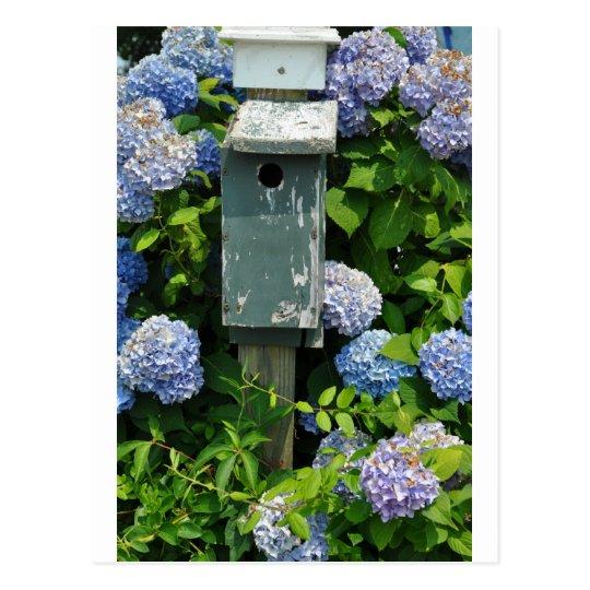 Hydrangeas and Bird Houses Postcard