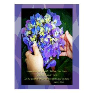 Hydrangeas and Matthew 19 14 Postcards