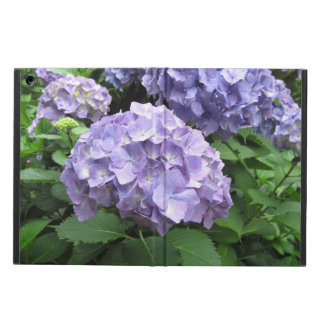 Hydrangeas at Trebah Gardens, Cornwall iPad Air Case