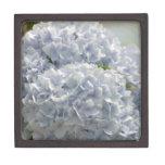 Hydrangeas azules cajas de regalo de calidad
