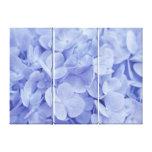Hydrangeas azules lienzo envuelto para galerías