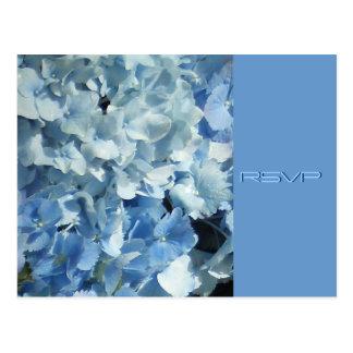 Hydrangeas azules que casan RSVP Tarjetas Postales