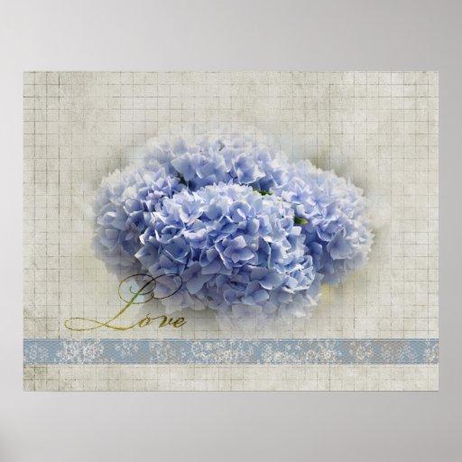 Hydrangeas azules románticos póster