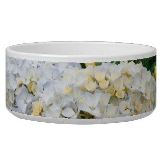 Hydrangeas Bowl