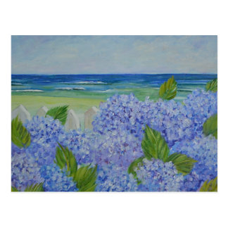 Hydrangeas By The Sea Postcard