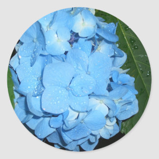 Hydrangeas CricketDiane Art,  Design & Photography Classic Round Sticker
