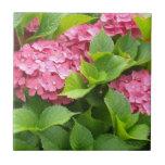 Hydrangeas de color rosa oscuro azulejo cuadrado pequeño