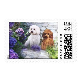 Hydrangeas del franqueo del caniche timbres postales