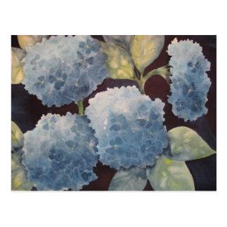 Hydrangeas divinos postales
