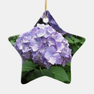 Hydrangeas en los jardines de Trebah, Cornualles Adorno Navideño De Cerámica En Forma De Estrella