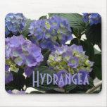 Hydrangeas franceses de los azules cielos tapete de ratones