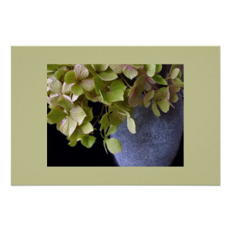 Hydrangeas in a vase poster