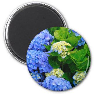 Hydrangeas 2 Inch Round Magnet