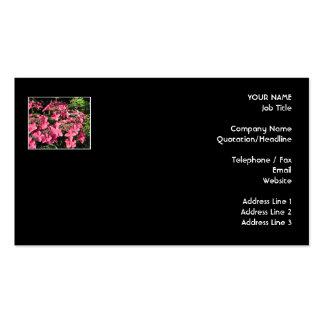 Hydrangeas. Pink Flowers on Black. Business Card