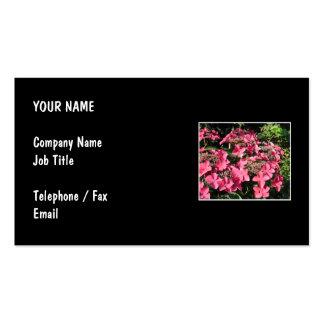 Hydrangeas. Pink Flowers on Black. Business Cards