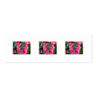 Hydrangeas. Pink Flowers. White. Business Card Templates