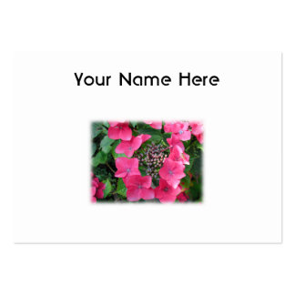 Hydrangeas. Pink Flowers. White. Business Cards