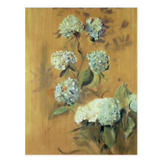 Hydrangeas Postcard