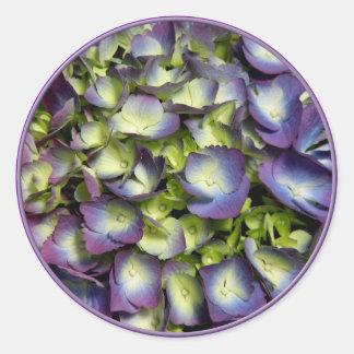 Hydrangeas púrpuras y blancos pegatina redonda