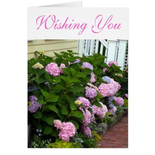 Hydrangeas rosados del ladrillo tarjeta de felicitación