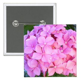 Hydrangeas rosados pin