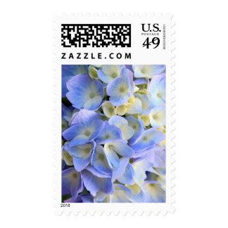 Hydrangeas Stamp