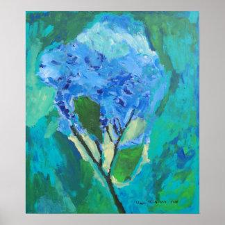 Hydrangia azul poster