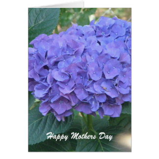 Hydrangia Mothers Day Card