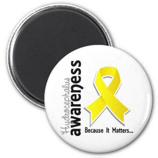 Hydrocephalus Awareness 5 2 Inch Round Magnet