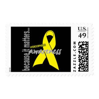 Hydrocephalus Awareness Postage Stamp