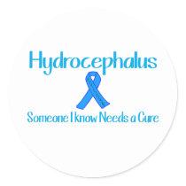 Hydrocephalus Classic Round Sticker