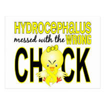 Hydrocephalus Messed With Wrong Chick Postcard