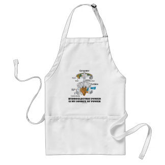 Hydroelectric Power Is My Source Of Power Adult Apron