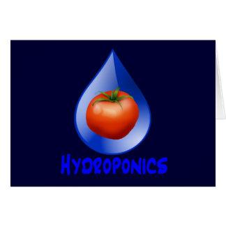 Hydroponic Tomato water drop design logo Greeting Card