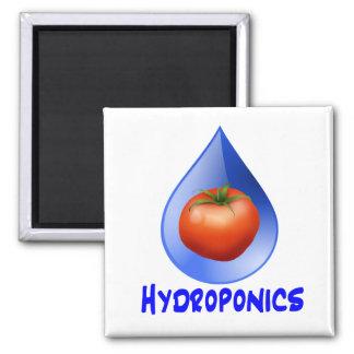 Hydroponic Tomato water drop design logo 2 Inch Square Magnet