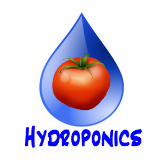 Hydroponic Tomato water drop design logo Photo Cut Out