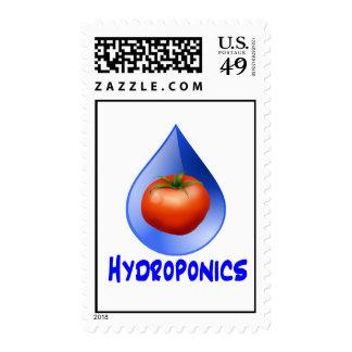 Hydroponic Tomato water drop design logo Postage Stamp