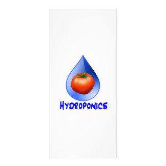 Hydroponic Tomato water drop design logo Rack Card
