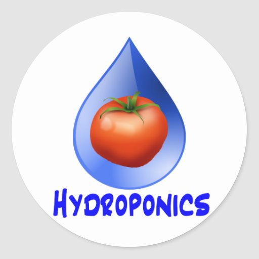 Hydroponic Tomato water drop design logo Round Sticker