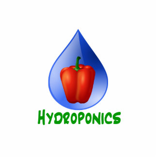 Hydroponics, Bell Pepper, drop, green text Acrylic Cut Out